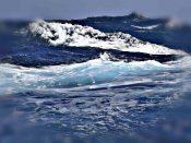 contaminacion co2 oceanos